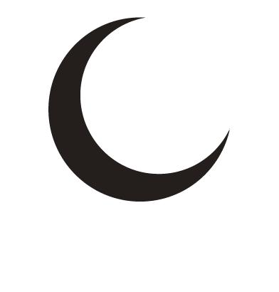 Holistic Light